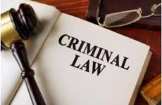 Roles played by a criminal lawyer in Mississauga